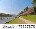 半木の道の枝垂れ桜と賀茂川の飛び石を楽し気に渡る人々 72927375
