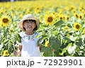 ひまわり畑 72929901
