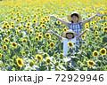 ひまわり畑 72929946