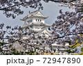 世界遺産姫路城と桜 72947890