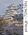 世界遺産姫路城と桜 72947891