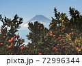 富士山とみかん 72996344