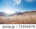 光り輝く太陽とすすきの風景 73004876