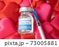 新型コロナワクチンイメージ 73005881