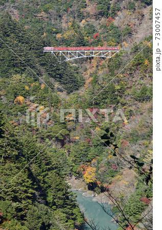 大井川鐵道沿線の旅 紅葉の関の沢橋梁 73007457