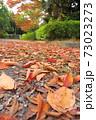 枯れ葉散る秋の公園風景 73023273
