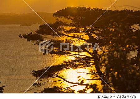 朝日が照らす美しい太平洋と松の木|宮城県松島町の西行戻しの松公園展望台 73024778