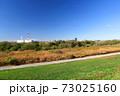 晩秋の除草された江戸川土手と枯荻のある河川敷風景 73025160