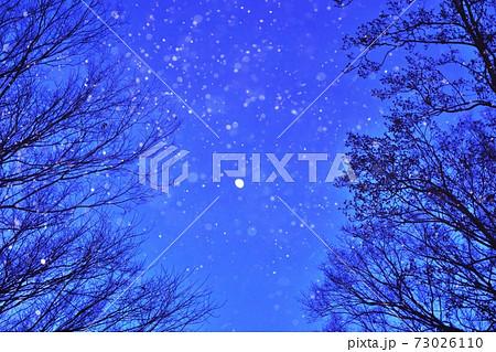夜空の月 メッセージカード1 73026110