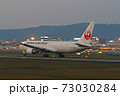JAL ボーイング767-300 73030284