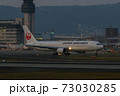 JAL ボーイング767-300 73030285