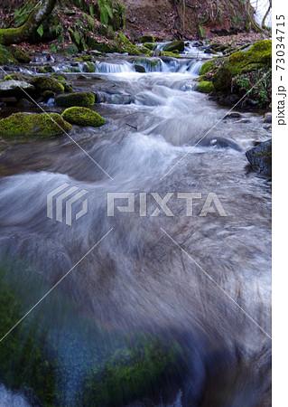 山の小川 コケ石の間を流れる清流 73034715