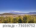 東名高速富士川SA下り線から見た富士山 冬 冠雪 73039752