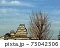 秋の夕暮れ姫路城 73042306