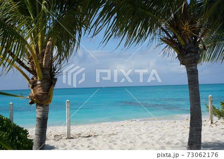 カリブ海の美しいビーチと白い砂浜とヤシの木 73062176