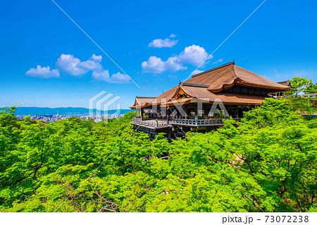 新緑の清水寺 73072238