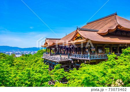 新緑の清水寺 73073402