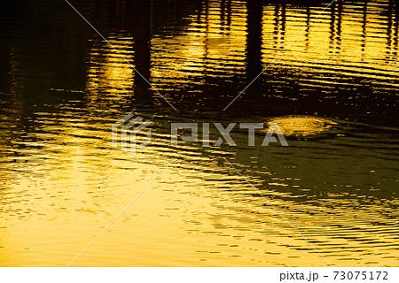グラフィック素材 夕日に輝く水面と橋げたの影 73075172