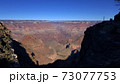 自然 米国 73077753