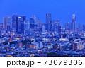 【東京都】新宿副都心の夜景 73079306