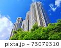 【東京都】新緑の東京都庁(第一本庁舎 第二本庁舎) 73079310