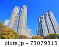 【東京都】紅葉の東京都庁(第一本庁舎 第二本庁舎) 73079313