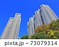【東京都】紅葉の東京都庁(第一本庁舎 第二本庁舎) 73079314