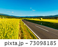 An empty road between agricultural fields leading to the mountains. Austrian rural landscape 73098185