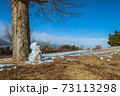 日だまりで溶けかけた雪ダルマ 73113298