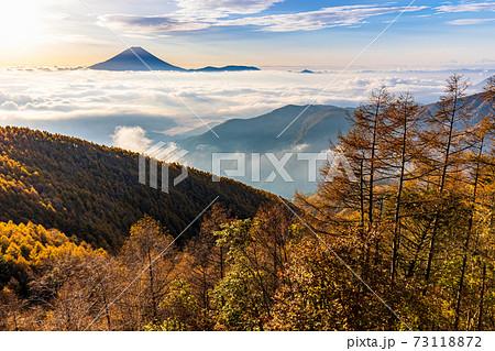 (山梨県)櫛形山の紅葉 大雲海に浮かぶ富士山 73118872