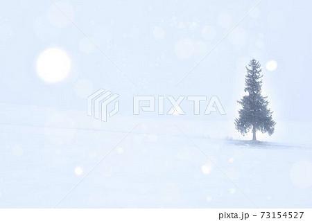雪原にの丘に佇むクリスマスツリーの木 73154527