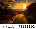 【冬】雪が積もった夕方の歩道に夕日が差し込む様子 73155392
