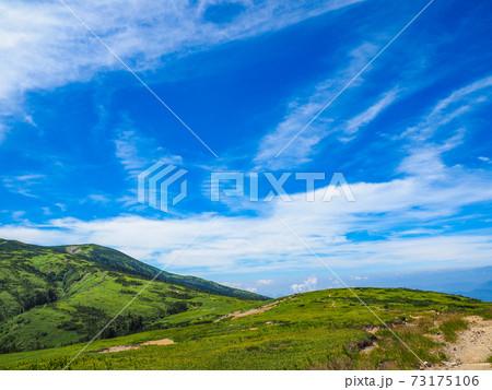 北アルプス薬師岳に向かう草原の登山道から見る風景 73175106