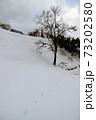 大雪の中休み 福島県只見町 73202580