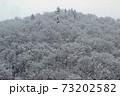 里山の冬木立に雪積もる-道の駅きらら289 福島県南会津町 73202582