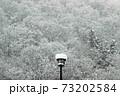 里山の冬木立と街路灯に雪積もる-道の駅きらら289 福島県南会津町 73202584