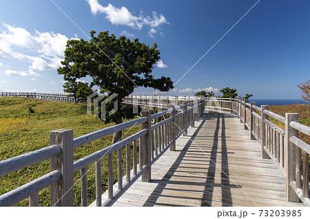 北海道 知床国立公園 知床五湖 73203985