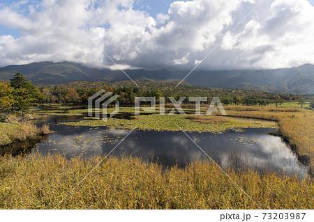 北海道 知床国立公園 知床五湖 73203987