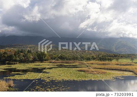 北海道 知床国立公園 知床五湖 73203991
