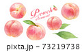 熟したジューシーなピーチの水彩イラストセット。白桃。葉付き。 73219738