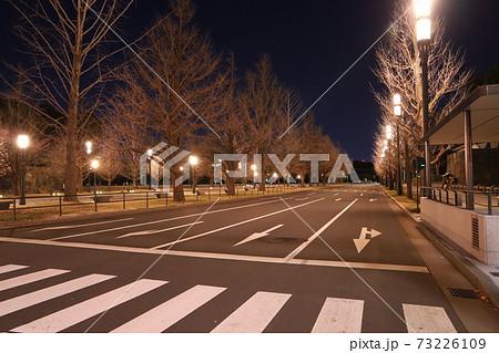 皇居から東京駅に抜けるメインストリートに規則正しく立ち並ぶ寒そうな木々たち 73226109