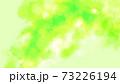春の訪れに緑が芽吹くイメージ 73226194