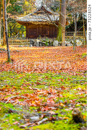 書写山、円教寺金剛堂(兵庫県姫路市書写)※作品コメント欄に撮影位置 73228324