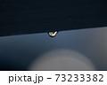 水滴 73233382
