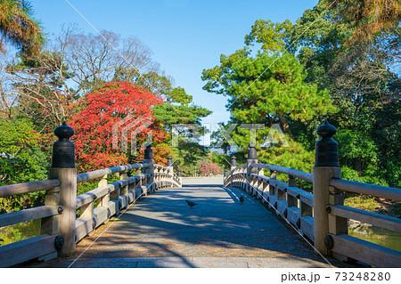 京都御苑の九条池に架かる高倉橋と紅葉 73248280