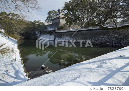 雪の熊本城 備前堀と飯田丸五階櫓 73287004