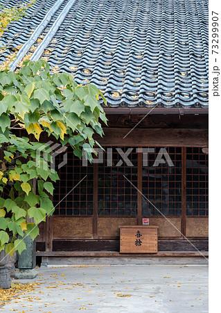 日本の伝統的な建築のお寺と境内の植物 73299907