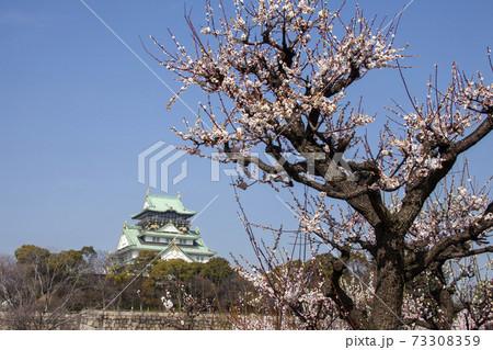 早春の大阪城-8、華やぐ梅林の彩との共演風景 73308359