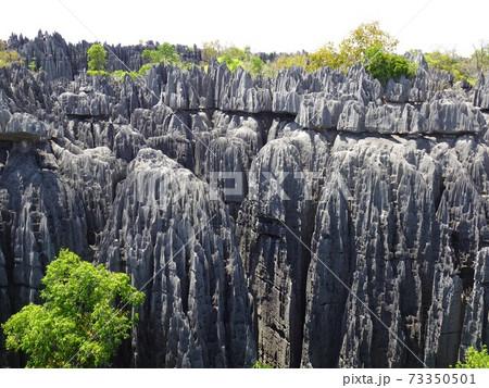 マダガスカル・ベマラハ国立公園大ツィンギーの頂上の景色 73350501
