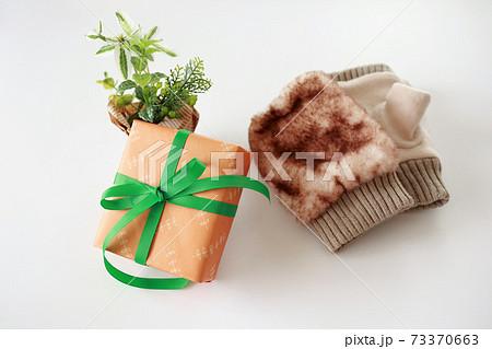 冬の贈り物 イメージ 73370663